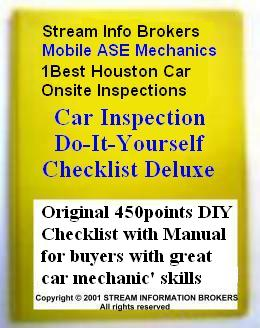 Car Inspection DIY Checklist Deluxe